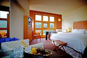 Habitacion Hotel Sheraton Bilbao Hotel Sheraton Bilbao